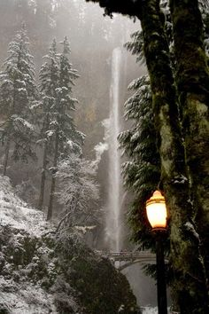 endorfins: Narnia (by Synapped) Dusky winter at Multnomah Falls in Oregon. This is the second-tallest year-round waterfall in the nation. Love the winter pic :) Multnomah Falls Oregon, Beautiful World, Beautiful Places, Amazing Places, Winter Szenen, Winter Night, Winter Trees, Les Cascades, Columbia River Gorge