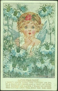 English Art Deco Signed 'Love-in-a Mist' - Millicent Sowerby illustration