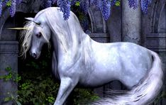 Are We Ready To See Dead Unicorns?