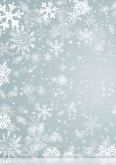 Christmas themed photography backgrounds backdrop Silver Snowflake