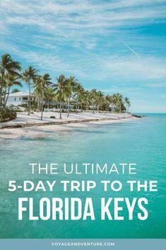 Places In Florida, Florida Vacation, Florida Travel, Florida Keys, Florida Beaches, Florida Trips, Vacation Spots, Travel Usa, Vacation Ideas