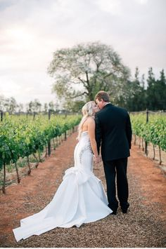 Cape_Town_Wedding_And_Portrait_Photographer_Robertson_Wedding_De_Wetshof_South_Africa_Destination_Wedding_Photographer_28