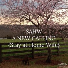 Stay at Home Wife… It's not old fashioned but a PASSION.