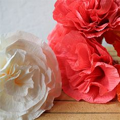 Learn how to use stiff floral crepe to make stunningly bright and gorgeous paper flowers!