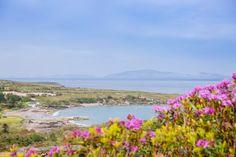 Profitez du mois de mai pour admirer les floraisons dans le comté de Kerry...   #kerry #flowers #ireland #irlande #alainntours #ringofkerry Photo Souvenir, Mai, Ireland, River, Mountains, Nature, Flowers, Outdoor, Mountain Pass