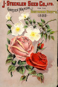 Ltd 1898   Seed Catalogs From Smithsonian Institution Libraries