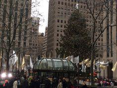 Rockefeller #Christmas Tree in New York City. #nyc