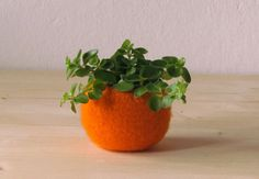 Felt succulent planter / felted bowl / Succulent by theYarnKitchen, $21.00