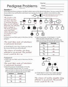 17+ Genes Kindergarten Worksheet in 2020 | Genetics ...