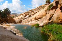 En las Peñitas, Vega de Río Palmas... Un lugar paradisíaco de Fuerteventura - Entre Pajara & Betancuria