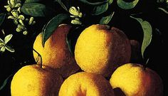 Francisco de Zurbarán, Still Life with Lemons, Oranges and a Rose(detail) 1633