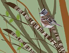 "Check out new work on my @Behance portfolio: ""Aves del Sur de Chile tercera edicion Wera Uñum"" http://be.net/gallery/54001897/Aves-del-Sur-de-Chile-tercera-edicion-Wera-Unum"