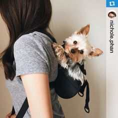 ruffit dog carriers will change the way you interact with your dog u0026 have adventures together the first comfortable safe u0026 durable frontfacing dog