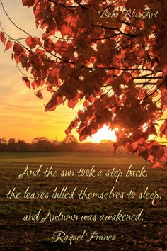 22 Autumn Quotes to Entice Your Senses And the sun took a step back, the leaves lulled themselves to sleep, and Autumn was awakened. Hello Autumn, Autumn Day, Autumn Morning, Autumn Leaves, Winter, Nature Quotes, Autumn Quotes And Sayings, Autumn Quotes Inspirational, Season Quotes