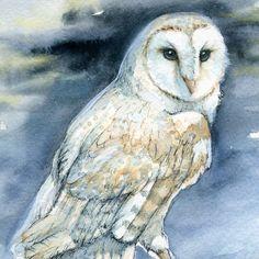 barn owl prints   Like this item?