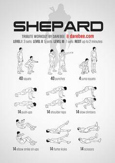 Shepard (Bro Shep) Workout