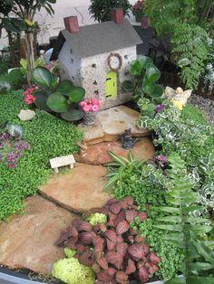 Fairy Garden Plants | Fairy Garden Path, Page 6
