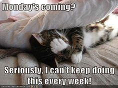 Mondays coming quotes quote days of the week sunday monday quotes tomorrows monday sunday uotes