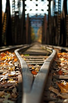 Railway......research