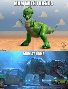 Moms in a nutshell   funny pictures