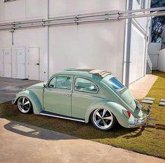 Só para quem é apaixonado por fusca! Vw Bugs, Volkswagen Beetle Vintage, Vw Volkswagen, Combi Wv, Porsche, Vw Classic, Vw Vintage, Modified Cars, Vw Beetles