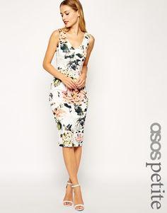 ASOS PETITE Garden Rose Pencil Dress