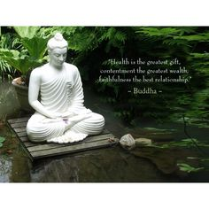 Health is the greatest gift ~ Contentment, the greatest wealth ~ Faithfulness, the best relationship ༺❁༻ Buddha