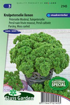 Semená byliniek : Semená, Petržlen vňaťový kučeravý Xenon 3g ± 1650 semien
