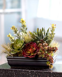 A mixed variety of permanent succulents, including such favorites such as echeveria, jade, aloe, and sedum, combine in an earthy blend of green, brown and burgundy tones in a low black ceramic planter.
