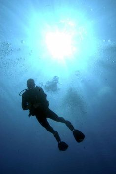 Learn to scuba dive and take sweet pictures underwater! A Groupon for  Californians  http 6f12f22e43eb
