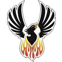 Lincoln-Way North HS Phoenix Fundraises with BoosterShot  http://www.goboostershot.com/store/  #fundraising #nonprofitfundraising #schoolfundraising #youthsports