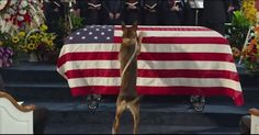 A dog is the only thing on earth who loves you more than he loves himself – so imagine a soldier dog's mourning when his handler dies in the line of duty! Don't throw this all away, Friends. Stand TALL and STRONG! www.kerlagons.com