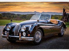 cars british jaguar e type Jaguar Sport, Jaguar Xk, Jaguar E Type, Jaguar Cars, Vintage Sports Cars, British Sports Cars, Vintage Cars, Jaguar Roadster, Roadster Car