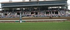 Ellis Park Race Track | Visit Evansville