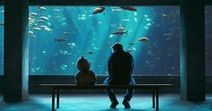 """ted movie aquarium scene - There are some fucked up fish out there, look at this guy."""" I married the wrong woman and now I lead a life of regret ."""" And look and this one """" I went to New York once in and I just did not feel safe. Two Movies, Great Movies, John Bennett, Ted, Go To New York, Comedy Films, Movie Wallpapers, Movie Releases, Pictures Images"""