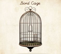 bird cage drawing | bird cages wallpaper art vintage pretty