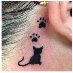 Silhouette of Cat's Back & Paw