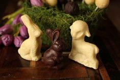 Use this low carb and sugar free recipe to make cute Easter Chocolates!