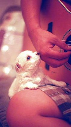 Little kiss and playing guitar