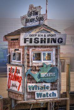 Maine - deep sea fishing and whale watching sign. Sea Sports, Deep Sea Fishing, Sport Fishing, Whale Watching, Nantucket, New Hampshire, Rhode Island, East Coast, New England
