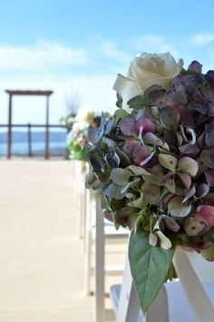 Pew markers were made from a single bloom of antique blue hydrangea with a few polar star roses tied in | Dorothy McDaniel's Flower Market