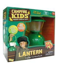 Kids Lantern Insect Lore