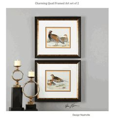 Charming Quail Framed Art Set Of 2 Square Matched Pieces Traditional
