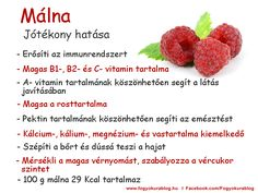 Doterra, Raspberry, Healthy Lifestyle, Health Fitness, Fruit, Vegetables, Therapy, Food, Alternative