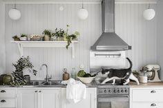 Här kommer lite sommarinspiration för köket som jag gjorde för några veckor sedan tillsammans med fotograf Lina Östling och till hjälp hade vi bästa Jill Windahl. Jag tänkte mig ett jordnära reportage med färgerna vitt och grönt i krispig symbios. Reportaget kom ut i tidningen Lantliv idag så löp och köp! Dessa jobb är de …