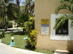 A Cuban paradise Enjoy the paradise of Cuba, especially Varadero beach and get a discount to stay with airbnb. click the link: Varadero Cuba, Cuba Travel, Cuban, Paradise, Sidewalk, Island, Link, Beach, Plants