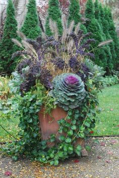 Fall container  By Deborah Silver  Landscape and garden designer  blog attached to image with  more planter ideas in addition to this planter