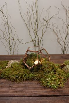 "Super easy woodsy centerpiece (or table runner!) using Sheet Moss, Curly Willow Branches, some assorted forest ""accessories"" and a terrarium!"