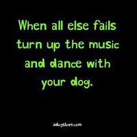 THIS IS MY LIFE!!!!!!! Great dog quote.