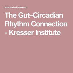 The Gut–Circadian Rhythm Connection - Kresser Institute